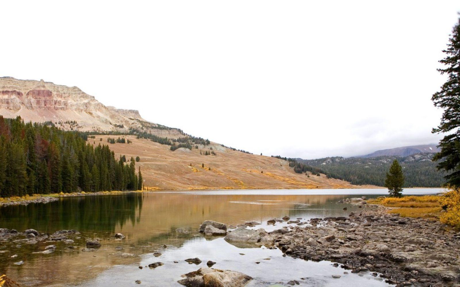 nature-fall-river-1024x640