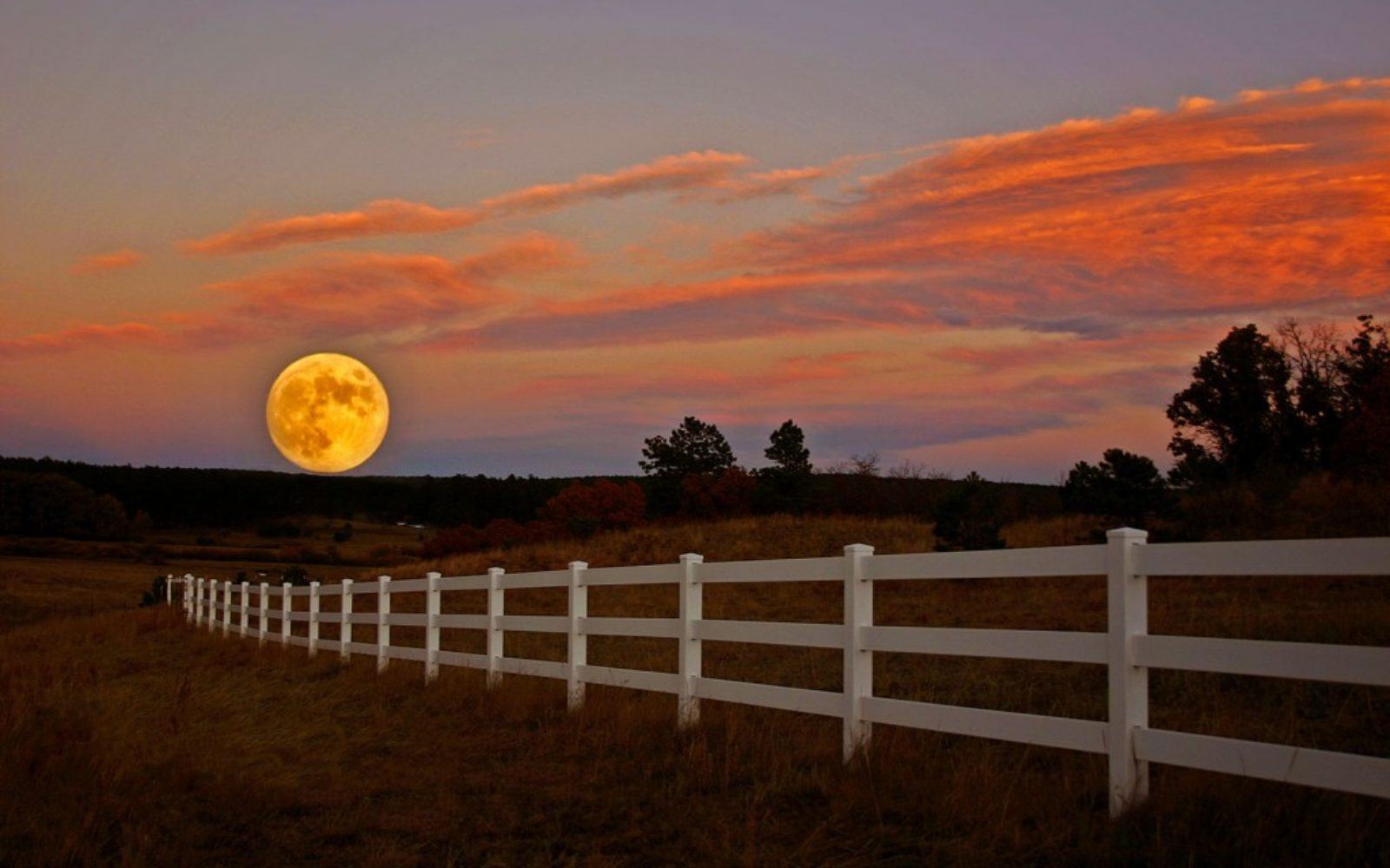 nature-large-moon-1024x640