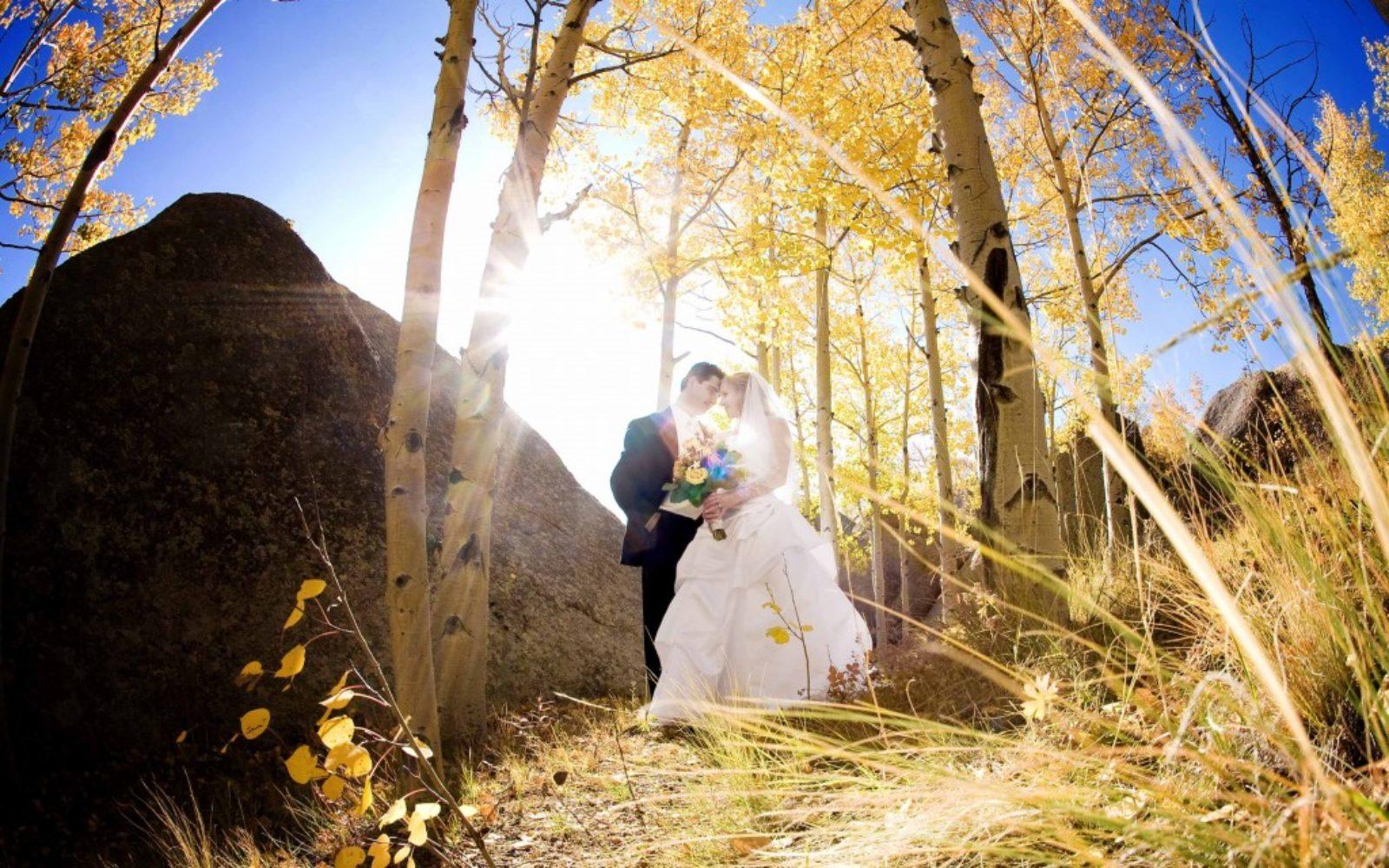 wedding-golden-aspens-1024x640